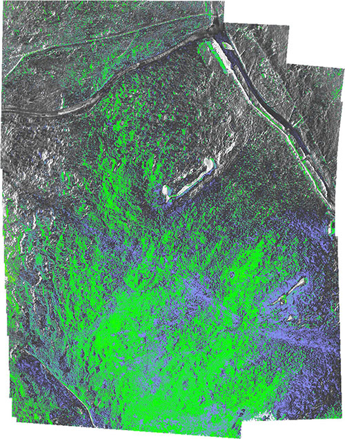 Processed false colour image showing the NDVI